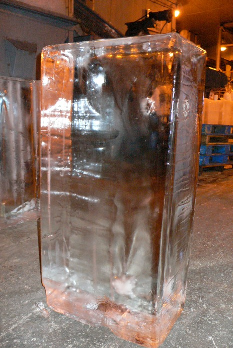 300 lb Photo Block Real Ice